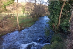 Brendon River